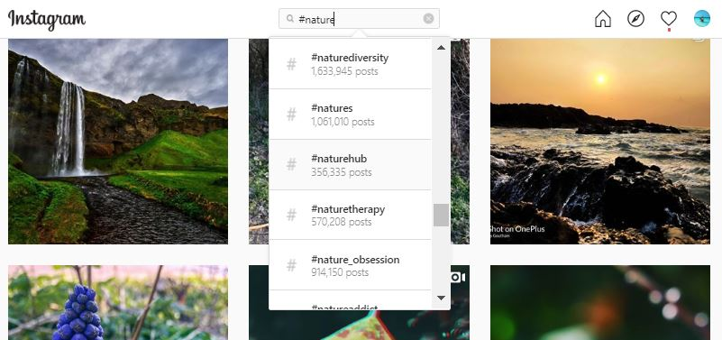 nature hashtags to get likes
