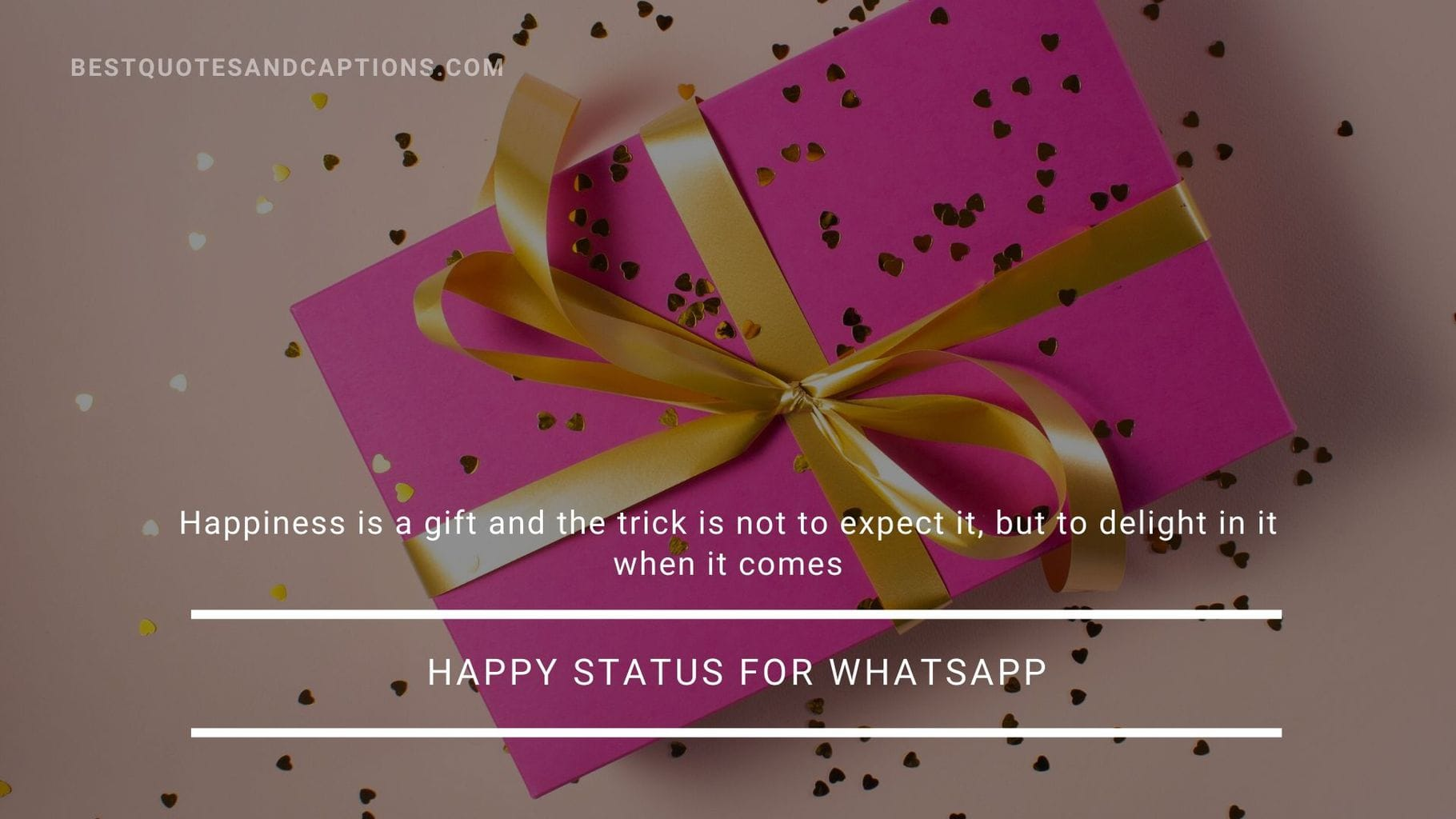 Happy Status for Whatsapp in Englis