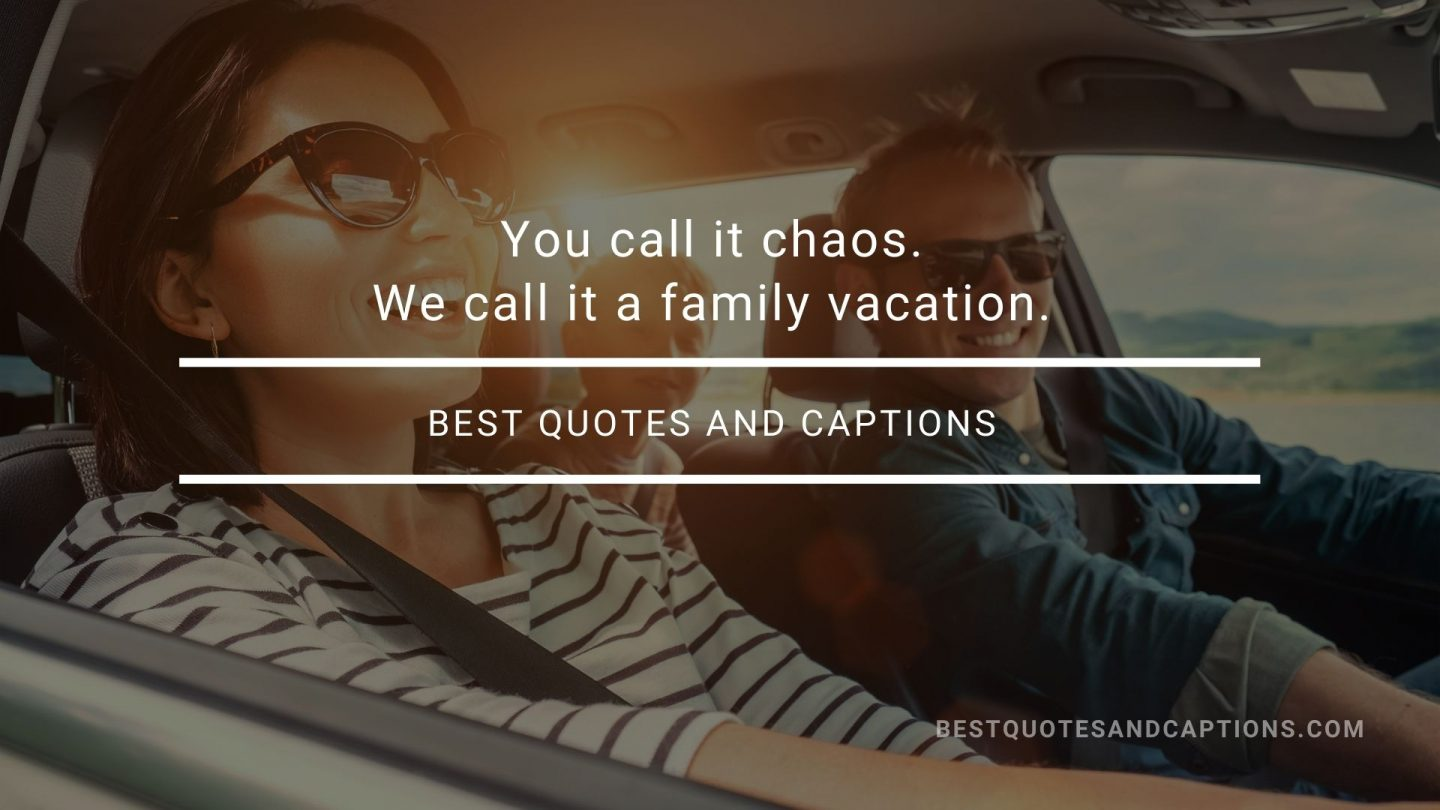 Quote about family trip - You call it chaos