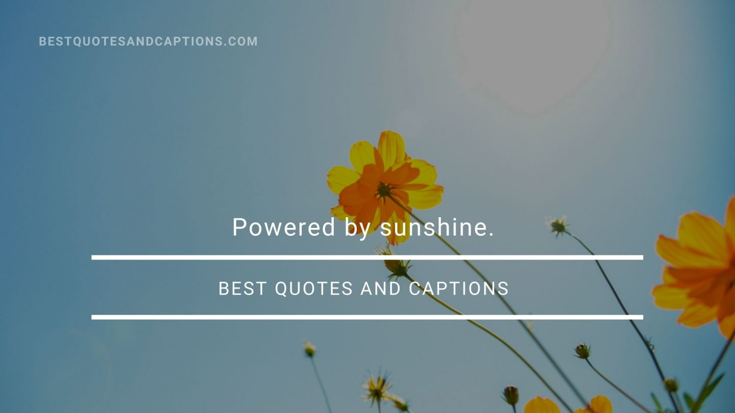 Quotes about the sun - powered by sunshine