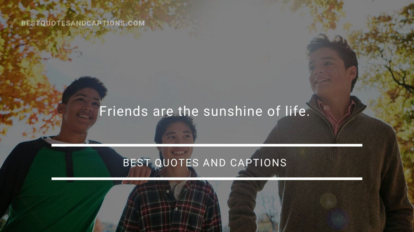 Quote about sun - friends